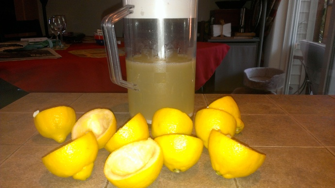 National Lemonade Day